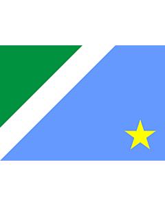 Flag: Mato Grosso do Sul
