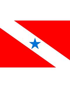 Flag: Pará