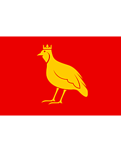 Flag: French province of Aunis