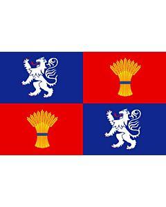 Flag: French province of Gascogne