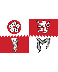 Flag: Leicestershire
