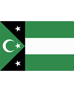 Flag: Independent Government of Western Thrace  AKA Turkish Republic of Western Thrace