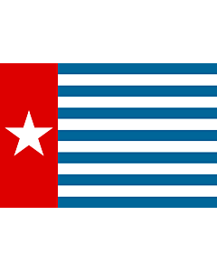 Flag: Unofficial Morning Star flag
