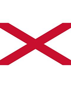 Flag: St Patrick s saltire