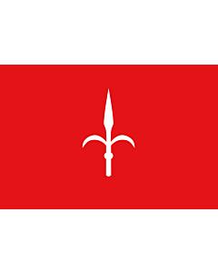 Flag: Province of Trieste