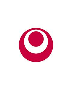 Flag: Okinawa Prefecture