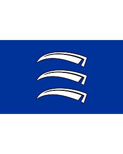 Flag: Triesen