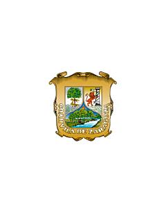 Flag: Coahuila