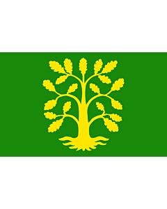 Flag: Vest-Agder