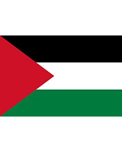 Flag: Palestine