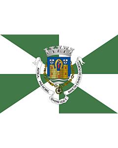 Flag: Porto District