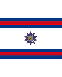 Flag: Paysandú Department