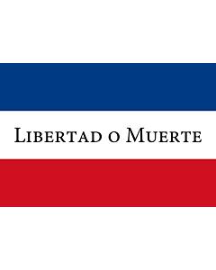 Flag: Treinta y Tres